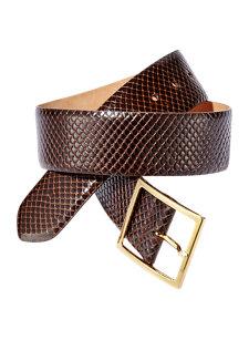 anaconda brown belt