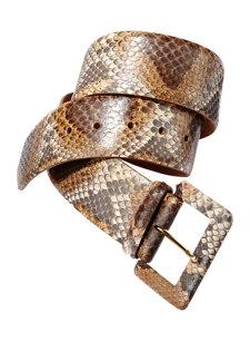rochelle python