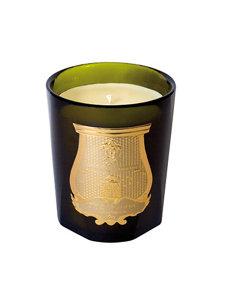 ernesto candle