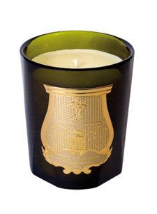 solix rex candle