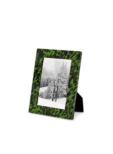 emerald tortoise frame 4x6