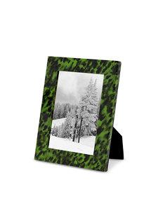 emerald tortoise frame 5x7