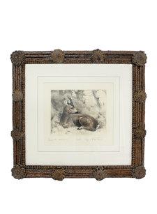 pinecone framed lying roebuck print